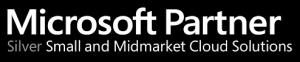 microsoft_silver_logo