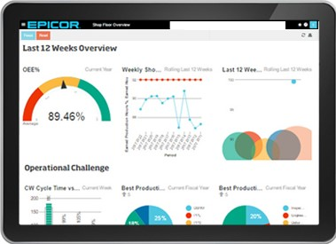 Business Intelligence and Analytics for Epicor ERP